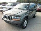 2002 Onyx Green Pearlcoat Jeep Grand Cherokee Laredo #58915735
