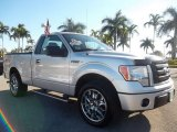 2010 Ingot Silver Metallic Ford F150 STX Regular Cab #58969851