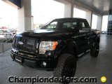 2011 Ford F150 STX Regular Cab 4x4