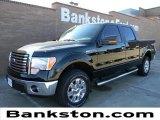 2011 Ebony Black Ford F150 XLT SuperCrew 4x4 #59001734