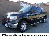 2011 Ebony Black Ford F150 XLT SuperCrew 4x4 #59001732