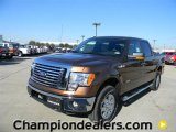2012 Golden Bronze Metallic Ford F150 XLT SuperCrew 4x4 #59001814