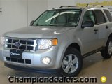 2012 Ingot Silver Metallic Ford Escape XLT #59053840