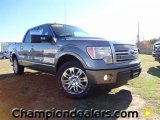 2011 Sterling Grey Metallic Ford F150 Platinum SuperCrew #59053834