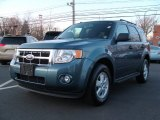 2010 Steel Blue Metallic Ford Escape XLT 4WD #59054409