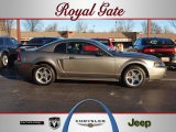 2001 Mineral Grey Metallic Ford Mustang Cobra Coupe #59117017