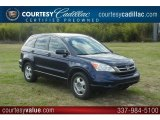 2010 Royal Blue Pearl Honda CR-V LX #59117382