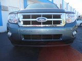 2010 Steel Blue Metallic Ford Escape XLT #59169365
