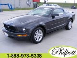 2007 Alloy Metallic Ford Mustang V6 Deluxe Coupe #5893483