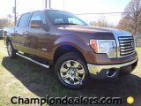 2012 Golden Bronze Metallic Ford F150 XLT SuperCrew #59168509