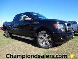 2011 Ebony Black Ford F150 FX2 SuperCrew #59168499