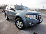 2010 Steel Blue Metallic Ford Escape XLT #59168288