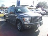 2010 Sterling Grey Metallic Ford F150 FX2 SuperCrew #59168615