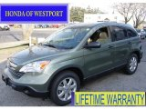 2009 Green Tea Metallic Honda CR-V EX 4WD #59242563