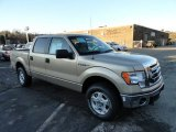 2012 Pale Adobe Metallic Ford F150 XLT SuperCrew 4x4 #59319689
