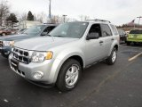 2012 Ingot Silver Metallic Ford Escape XLT 4WD #59375473