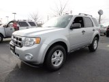 2012 Ingot Silver Metallic Ford Escape XLT #59375463