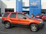 2005 Ford Escape Blazing Copper Metallic