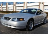 2003 Silver Metallic Ford Mustang V6 Coupe #59415877
