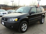 2006 Black Ford Escape XLT V6 4WD #5943338