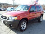 2006 Blazing Copper Metallic Ford Escape XLT V6 4WD #5943318
