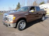 2012 Golden Bronze Metallic Ford F150 XLT SuperCrew 4x4 #59415311
