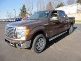 2012 Golden Bronze Metallic Ford F150 XLT SuperCrew 4x4 #59415300