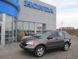 2009 Urban Titanium Metallic Honda CR-V LX 4WD #59478506