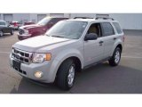 2009 Light Sage Metallic Ford Escape XLT V6 4WD #59478477