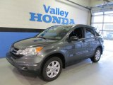 2011 Polished Metal Metallic Honda CR-V SE 4WD #59528806
