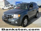 2010 Steel Blue Metallic Ford Escape XLT #59639508