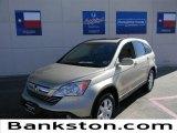 2008 Borrego Beige Metallic Honda CR-V EX-L #59639479