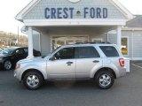 2009 Brilliant Silver Metallic Ford Escape XLT V6 4WD #59669384