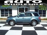 2010 Steel Blue Metallic Ford Escape Limited V6 #59669327