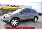 2009 Urban Titanium Metallic Honda CR-V EX #59689388