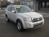2009 Light Sage Metallic Ford Escape Limited V6 4WD #59689353