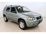 2006 Titanium Green Metallic Ford Escape Limited 4WD #59689456