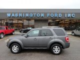 2011 Sterling Grey Metallic Ford Escape Limited V6 4WD #59739270