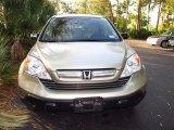2007 Borrego Beige Metallic Honda CR-V EX 4WD #59797128