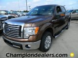 2012 Golden Bronze Metallic Ford F150 XLT SuperCrew #59859283