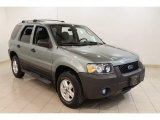 2006 Titanium Green Metallic Ford Escape XLS #59860501