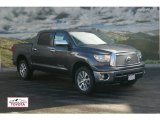 2012 Magnetic Gray Metallic Toyota Tundra Platinum CrewMax 4x4 #59980907
