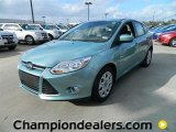 2012 Frosted Glass Metallic Ford Focus SE 5-Door #59980858