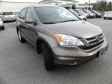 2010 Urban Titanium Metallic Honda CR-V EX-L #60009495