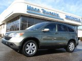 2009 Green Tea Metallic Honda CR-V EX-L 4WD #60009418