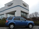 2009 Sport Blue Metallic Ford Escape XLT V6 4WD #60045155