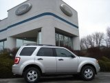 2012 Ingot Silver Metallic Ford Escape XLT 4WD #60045148