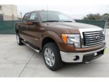 2012 Golden Bronze Metallic Ford F150 XLT SuperCrew 4x4 #60045354