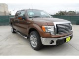 2012 Golden Bronze Metallic Ford F150 XLT SuperCrew #60045348