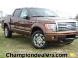 2012 Golden Bronze Metallic Ford F150 Platinum SuperCrew 4x4 #60111205